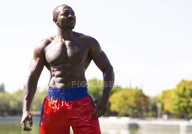 Deportista contemplando mientras está de pie en el parque en el día soleado - foto de stock