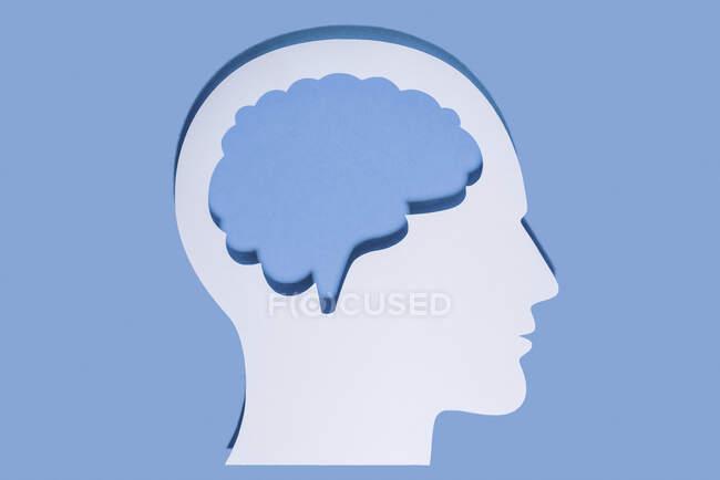 Primer plano de la cabeza humana blanca y el cerebro hecho con papel sobre fondo azul - foto de stock
