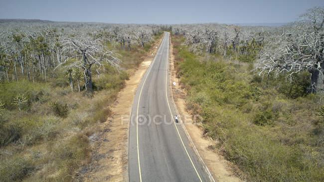 Vista aérea de una mujer en un autostop, zona de Cabo Ledo, Angola - foto de stock