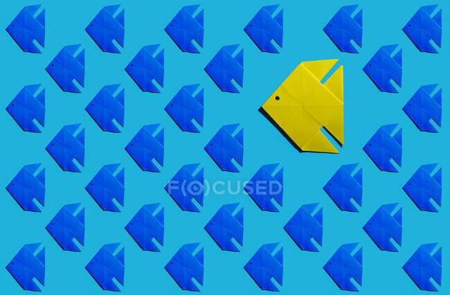 Патерн синьої риби орігамі з одним жовтим. — стокове фото