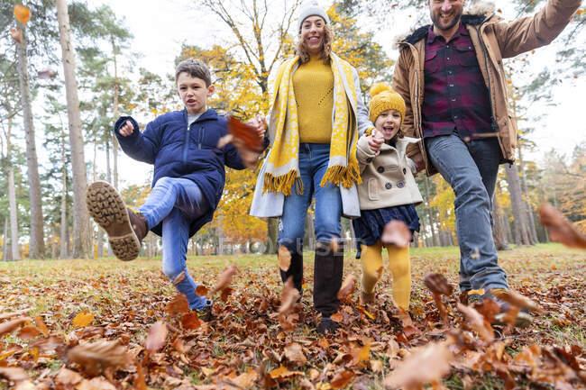 Семья кузнецов играла с упавшим листочком во время прогулки по лесу — стоковое фото