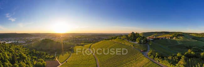 Alemania, Baden Wurttemberg, Stuttgart, Vista aérea de los viñedos al atardecer en otoño - foto de stock