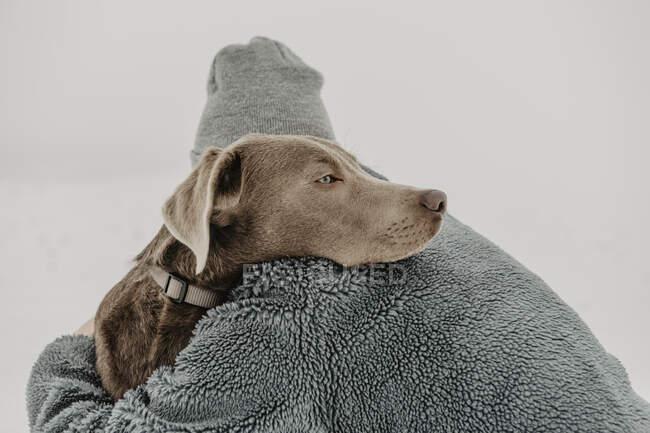Ragazza adolescente accovacciata nella neve e abbracciando Labrador Retriever — Foto stock