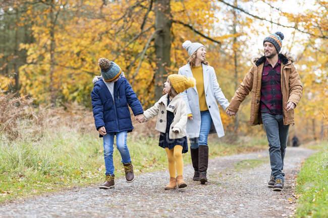 Братья и сестры смотрят друг на друга во время прогулки с родителями в лесу — стоковое фото