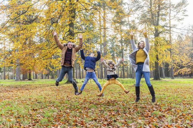 Famiglia giocosa con la mano sollevata saltando insieme nella foresta — Foto stock