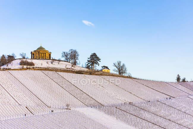 Alemania, Baden-Wurttemberg, Stuttgart, Viña desnuda cubierta de nieve con el Mausoleo de Wurttemberg en el fondo - foto de stock