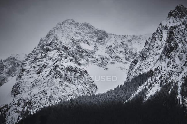 Снежная долина в Карвенделе — стоковое фото