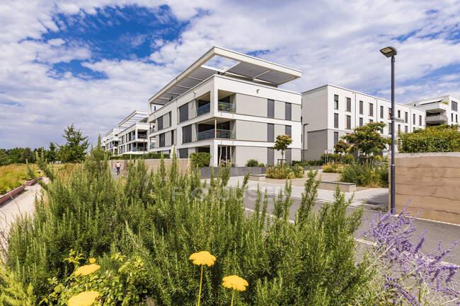 Passive house development area, Bahnstadt, Heidelberg, Germania — Foto stock