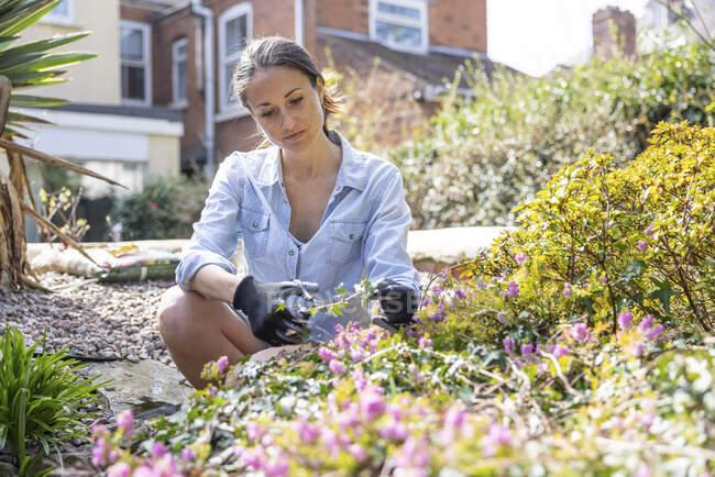 Freelancer femenina trabajando en el jardín - foto de stock