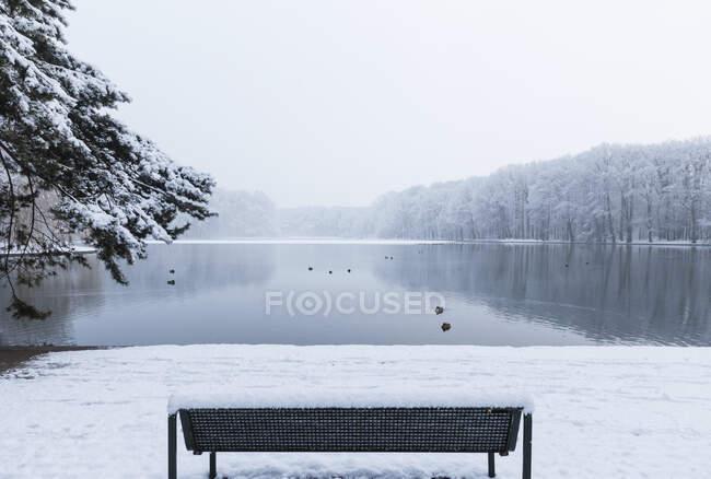 Пустая скамейка на заснеженном берегу Аденауэра Вейера — стоковое фото