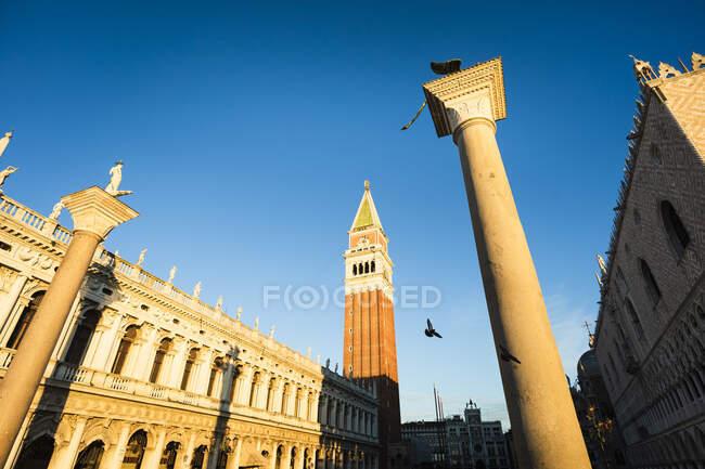 Италия, Венеция, Венеция, Колонна Льва Венеции, стоящая на фоне голубого цвета с изображениями святого Марка Кампаниле — стоковое фото