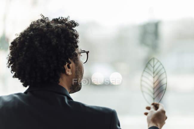 Бизнесмен с кудрявыми волосами рассматривает модель листьев в офисе — стоковое фото