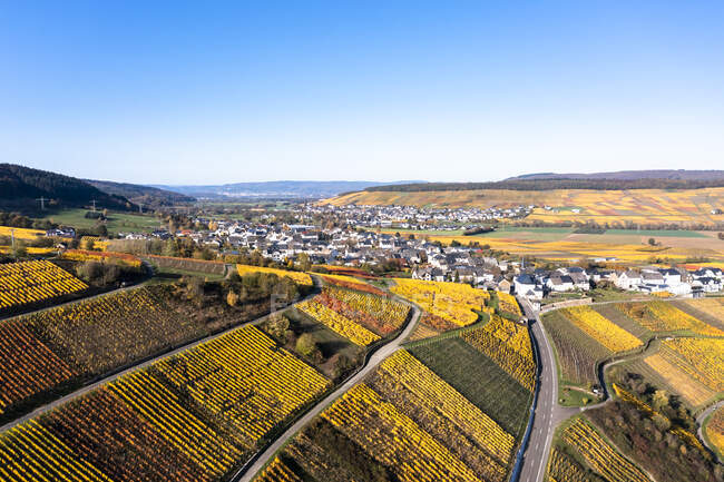 Германия, Рейнланд-Пфальц, Вертолетный вид деревни и окружающих виноградников осенью — стоковое фото