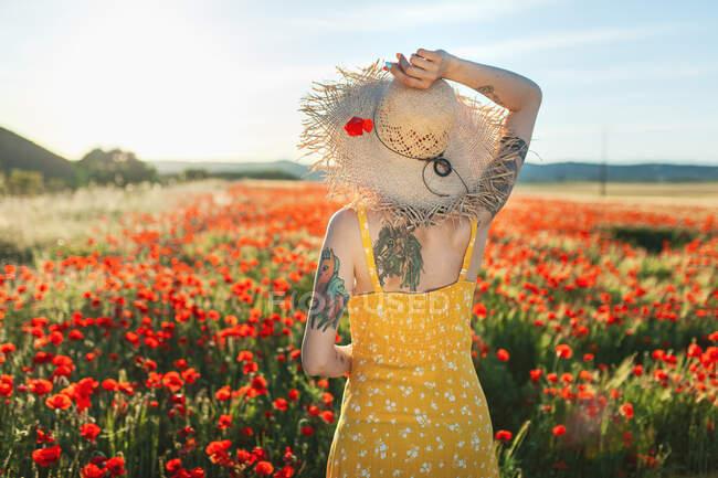 Женщина в шляпе, держит красный цветок мака на сельскохозяйственном поле — стоковое фото