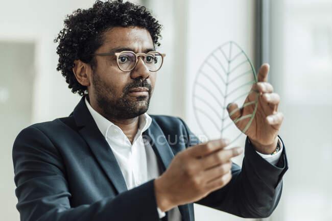 Мужчина-предприниматель рассматривает модель листьев в офисе — стоковое фото