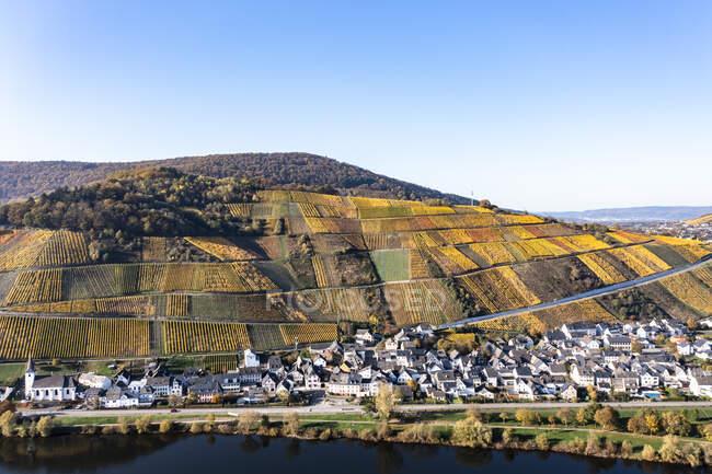 Германия, Рейнланд-Пфальц, Вид с вертолета на сельскую деревню с виноградниками на заднем плане — стоковое фото