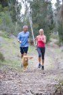 Active senior couple in sportswear jogging along woodland path with golden retriever — Stock Photo