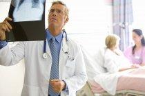 Зрелые мужчины доктор, подняв x ray — стоковое фото