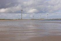 Строка ветряные мельницы на берегу — стоковое фото
