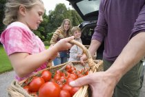Girl giving basket of tomatoes to father with smiling boy and woman on background — Stock Photo