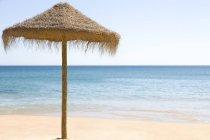 Зонты на пляже Tropical — стоковое фото