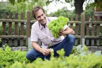 Smiling man squatting with fresh lettuce in and hands an looking at camera — Stock Photo