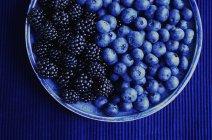 Tazón de fuente con arándanos y blueberies - foto de stock