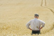 Senior farmer standing in wheat field — Stock Photo