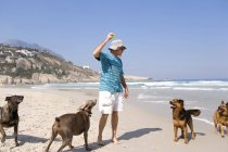 Low angle view of man playing with dogs on beach — Stock Photo
