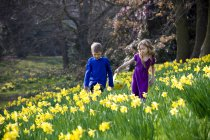A girl and a boy walking in a field of flowers — Stock Photo