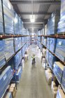 Warehouse workers looking up at cardboard boxes on shelves — Stock Photo
