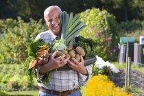 Senior man in checked shirt holding vegetables in garden — Stock Photo