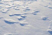 Wind blowing snow surface, sor-trondelag county, norway — Stock Photo