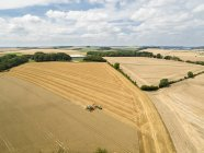 Harvest aerial landscape of combine harvester cutting summer wheat field crop with tractor trailer on farm — Stock Photo