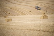 Tractor baler making straw bales in fields after summer wheat harvest on farm — Stock Photo