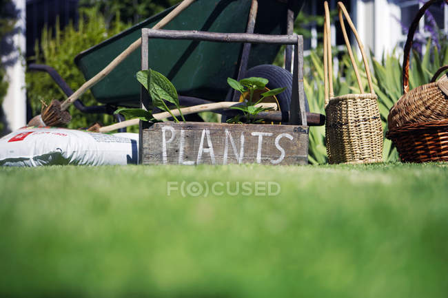Box labeled plants in garden beside wheelbarrow — Stock Photo