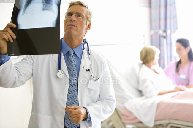 Mature male doctor holding up x ray — Stock Photo
