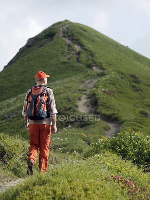 Vista do homem sênior traseira com mochila caminhadas na trilha de montanha — Fotografia de Stock