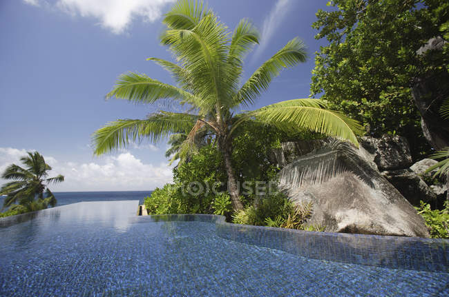 Swimming pool and palm trees of the Banyan Tree Hotel, Anse Intendance, Mahe', Seychelles — стоковое фото