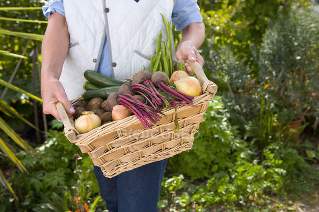 Woman with basket of vegetables — Stock Photo