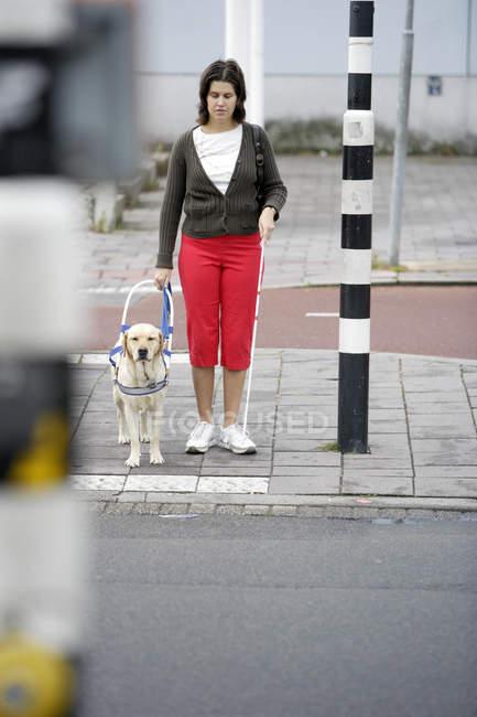 Blinde Frau und sehende Auge Hund warten auf die Straße zu überqueren — Stockfoto