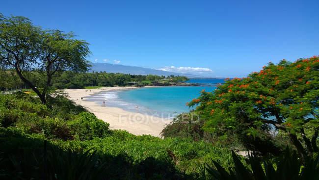 Playa de Mauna Lani, Isla Grande, Hawái, Estados Unidos - foto de stock