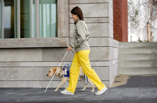 Blind woman and seeing eye dog walking on sidewalk — Stock Photo