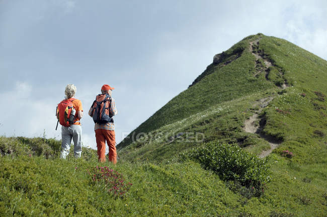 Rückansicht des Älteres Paar mit Rucksäcken auf Bergweg Wandern — Stockfoto