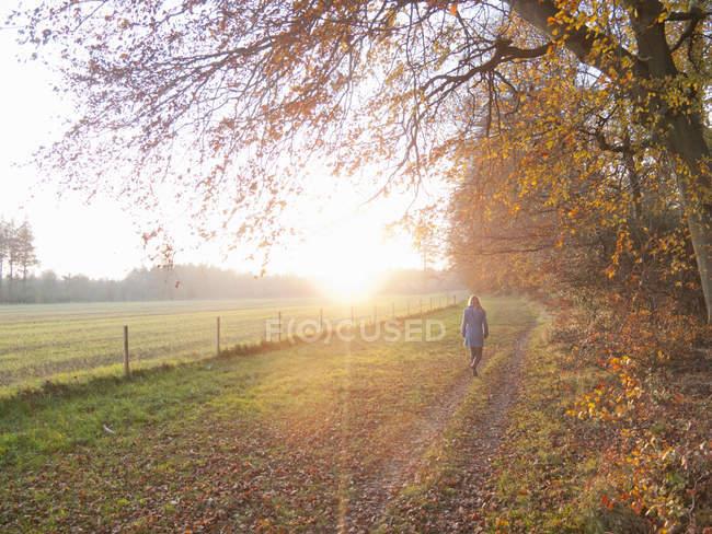 Вид женщину ходить в сельской местности на осень — стоковое фото