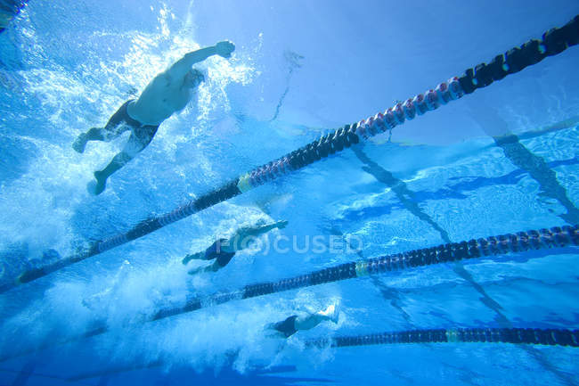 Underwater view of male sporstmen swimming in pool — Stock Photo