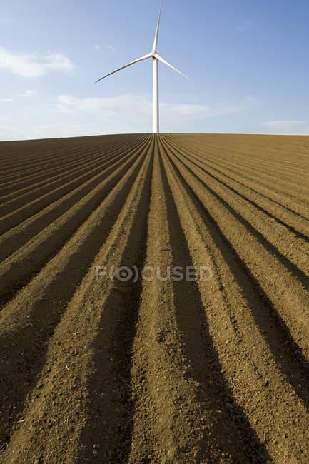 Wind turbine in ploughed field — Stock Photo