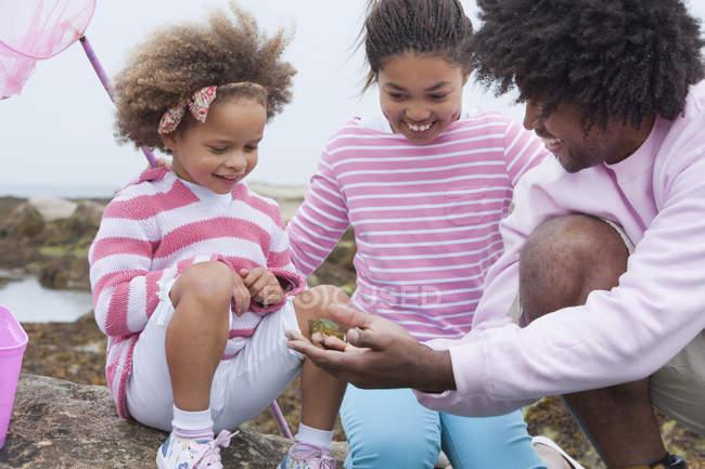 Padre e hijos de raza mixta explorar pozas - foto de stock