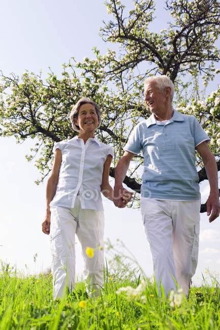 Senior couple holding hands and walking in park — Stock Photo