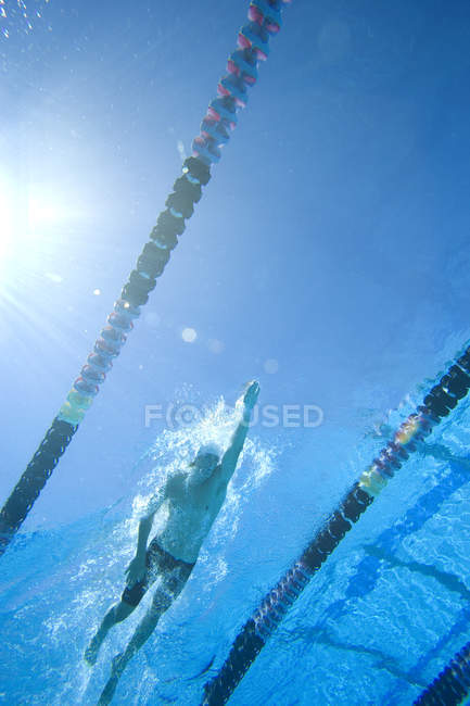 Underwater view of man swimming lengths in swimming pool — Stock Photo